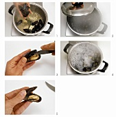 Cooking mussels in stock
