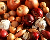 Still Life of Several Assorted Onions