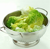 Lettuce leaves in a strainer