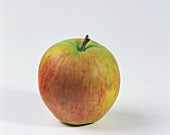 One Rubinette apple