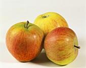 Three Rubinette apples