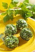 Fresh goat's cheese balls with fresh herbs