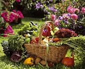 Fresh vegetables in a wicker basket in garden