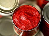 Opened tomato puree tin