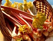 Sticks of rhubarb in a wicker basket