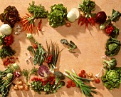 Vegetables laid round edge of picture (with copy space)