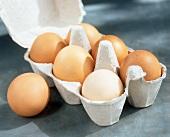 Braune Eier im Eierkarton und eins daneben