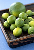 Limequats and a lime