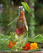 A bottle of herb vinegar in open air