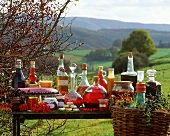 Home-made food, drinks and preserves from wild berries