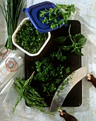 Chopping fresh herbs with mezzaluna and freezing