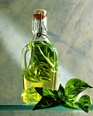Basil oil (oil flavoured with basil leaves)