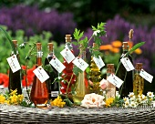 Oil and tinctures of medicinal plants and flowers