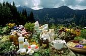 Stillleben mit Kräutern und Naturkosmetik auf Bergwiese