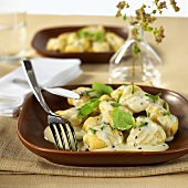 Gnocchi with gorgonzola sauce and basil