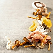 Assorted Exotic Mushrooms