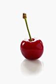 A sour cherry