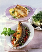Herrings on tomato sauce and redfish fillet in sesame crust