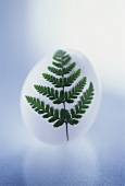 Easter egg with fern leaf