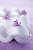 White eggs with lilac in egg holder
