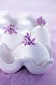 weiße Eier mit Flieder im Eierhalter