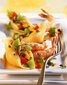 Pasta shells with kiwi fruit and shrimps