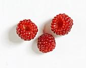 Three red mulberries