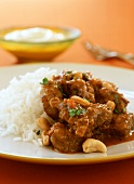 Lamb korma with cashew nuts and rice (India)