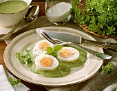 Hard-boiled eggs in Frankfurt green sauce