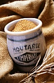 Mustard seeds in French ceramic pot on jute fabric