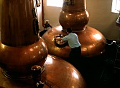 Distillery hall of the Knockdhu Distillery, Speyside, Scotland
