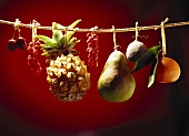 Fruit hanging on a string