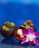 Mangosteens and an orchid flower