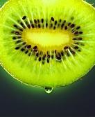 Slice of kiwi fruit (close-up)