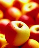 Elstar apples