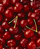 Sweet cherries (filling the picture)