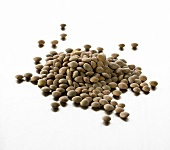 A heap of brown lentils