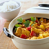 Turkey curry in a dish (India)