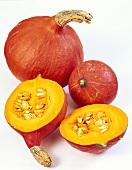 Red Hokkaido pumpkin (Uchiki kuri)