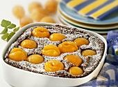 Semolina pudding with apricots and icing sugar