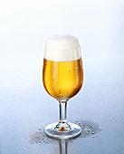 Pils with head of foam in a glass