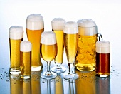 Various types of beer in beer glasses