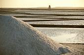 Salt pans near Trapani, Italy