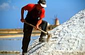 Man working on salt mountain; salt pans near Trapani, Italy
