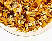 Fruit muesli with cornflakes in a bowl (detail)