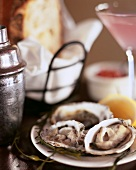 Plate of raw oysters on laid table