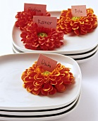 Flowers with place-cards on plates
