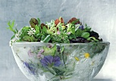 Mixed salad with wild herbs in ice bowl