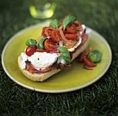 Bruschetta contadina (Tomatoes & onions on toasted bread)