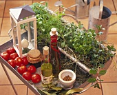 Tomatoes, grape seed oil etc. and fresh herbs